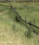 West Jordan Preserve fence andgrasses