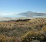 Antelope Island reflectioning4
