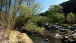 Badger Springs Trail16