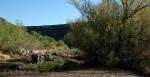 Badger Springs Trail17