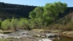 Badger Springs Trail20