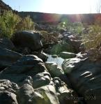 Badger Springs Trail8