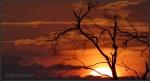 Sunrise 4.5