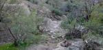 Desert stream crossing,WJT