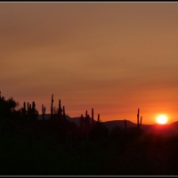 Sunday Sunrise...Sonoran Style