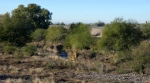New River walkway with Glendale Municipal airport to thewest